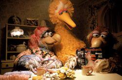 Follow That Bird Dodos Newsbeak.jpg