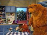 Bear234h