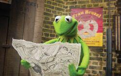 MMW promo Kermit map.jpg