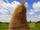 Singing Haystack