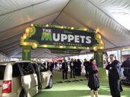 TheMuppets-WorldPremiere-ElCapitan-(2011-11-12)-01
