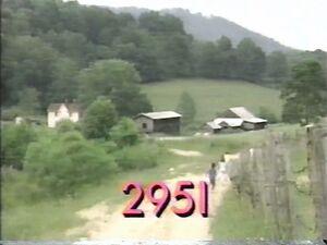 2951.jpg
