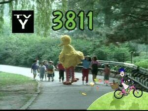 3811.jpg