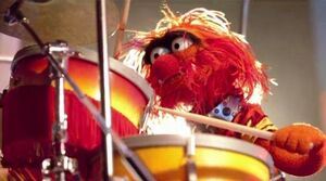 Animal drums 2011.jpg