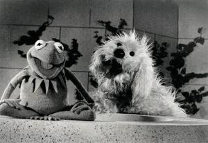 KermitRufus.jpg