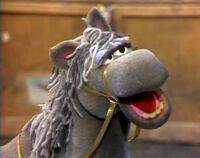 Duke-Horse