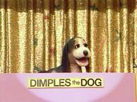 DimplestheDog