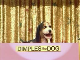 DimplestheDog.jpg