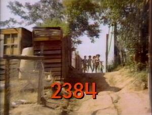 2384.jpg