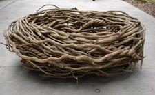 Big Birds nest from Elmo in Grouchland