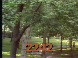 2242.jpg
