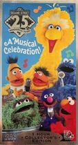Sesame Street: 25 Wonderful Years