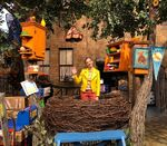 Amanda Seyfried in Big Birds Nest