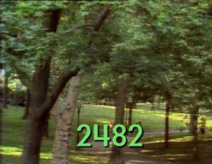 2482.jpg