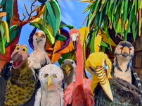 AnimalShowBirds
