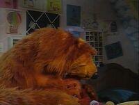 Bear401h