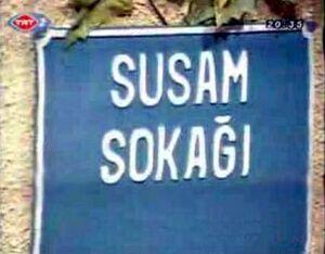 Susam sokagi title card.JPG