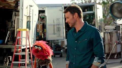 Small Talk with Scott Foley and Animal