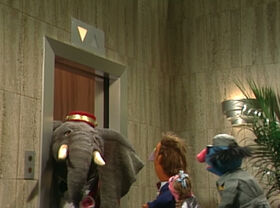 Elephantelevator.jpg