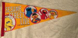 Sesame street live vee pennant banner