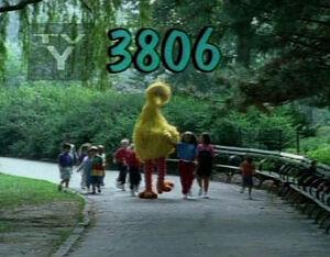 3806.jpg