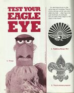 Rangerrick-eagles