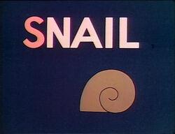 S-Snail.jpg