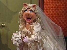 Weddingpiggy-martinshort