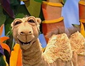 Doreen the Camel.jpg
