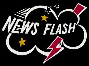 Title.newsflash.jpg