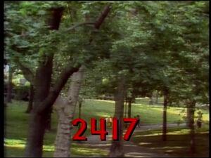2417.jpg