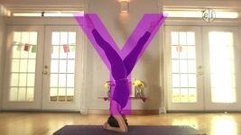YogaY