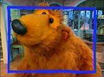 Episode 104: Shape of a Bear