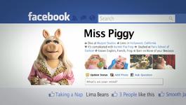 Piggy facebook