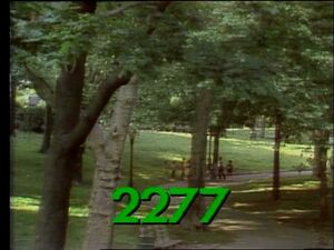 2277 real.jpg