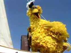 Admiral Bird.jpg