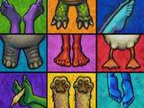Elmo's World: Feet