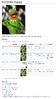 File description page old layout