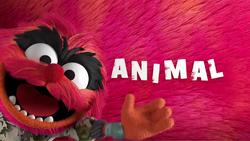 MB2018-Animal02