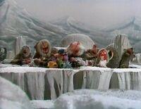 Eskimopigs