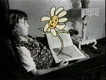 Surpriseflower