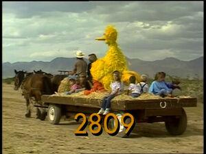 2809.jpg