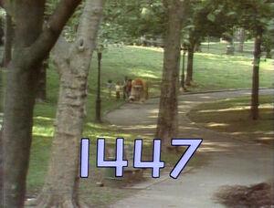1447.jpg