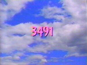3491.jpg