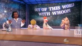 TheView-8-8-14-B