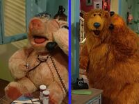 Bear211f