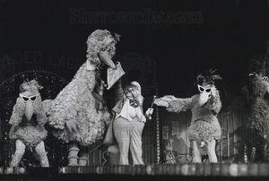Ssliveseedybirds1980.jpg