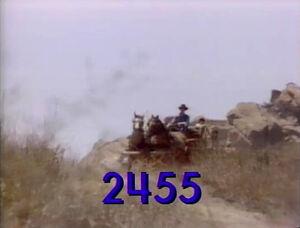 2455.jpg