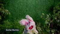 MuppetsNow-S01E05-SomeBunny