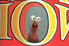 Turkeyshow